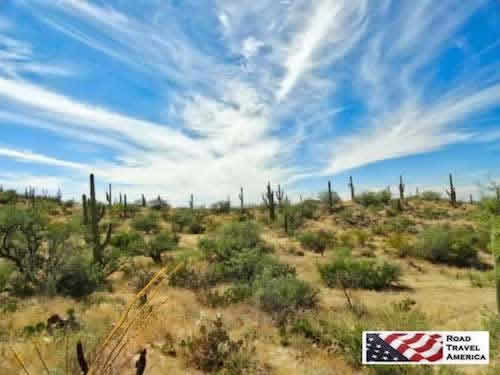 One of the most popular destinations in Tucson ... Saguaro National Park