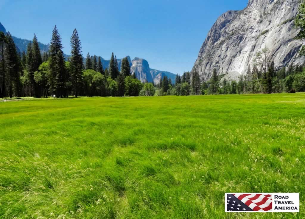 The green meadows of Yosemite National Park in California