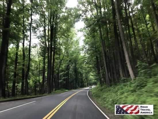 Beautiful winding roads cross the Great Smoky Mountains National Park