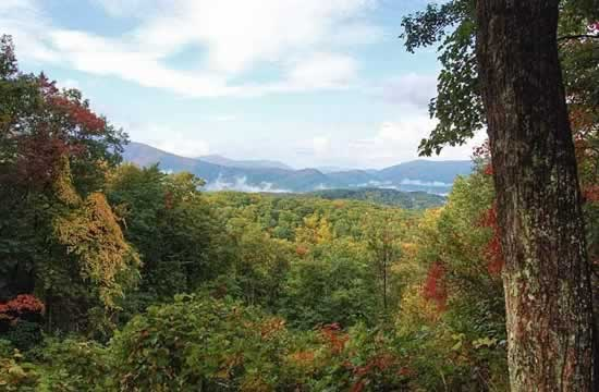 Great Smoky Mountains National Park vista in the fall