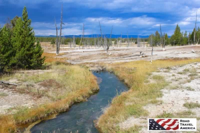 Lovely stream through a geothermal area in Yellowstone National Park